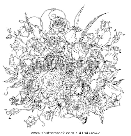uncoloured pictures of flowers isolated rose outline drawing stock vector illustration pictures flowers of uncoloured