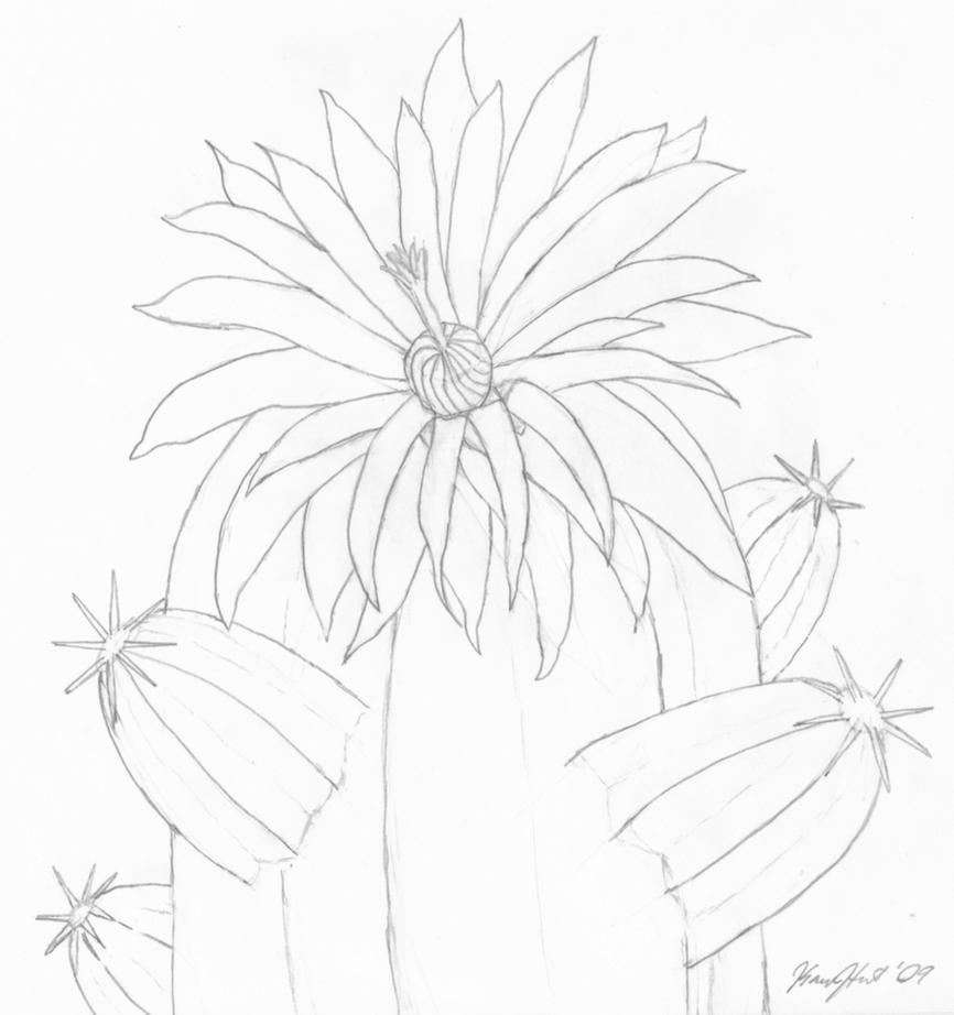 uncoloured pictures of flowers uncolored stock photos royalty free images vectors flowers uncoloured pictures of