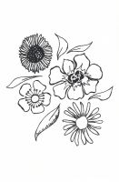 uncoloured pictures of flowers uncoloured rose clip art at clkercom vector clip art of pictures uncoloured flowers