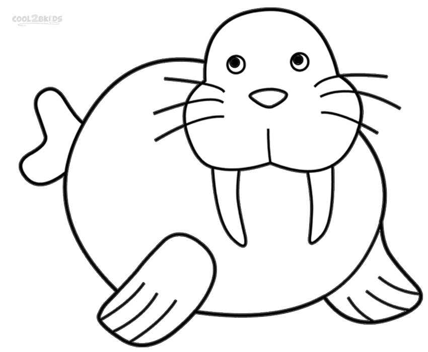 walrus colouring page 12 free animal walrus coloring sheet for kids page colouring walrus