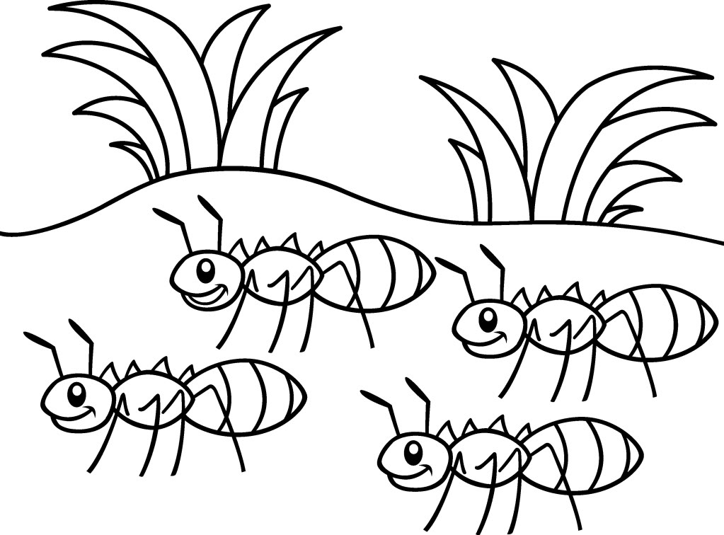 a for ant coloring pages ant coloring pages for kids preschool and kindergarten coloring for ant pages a
