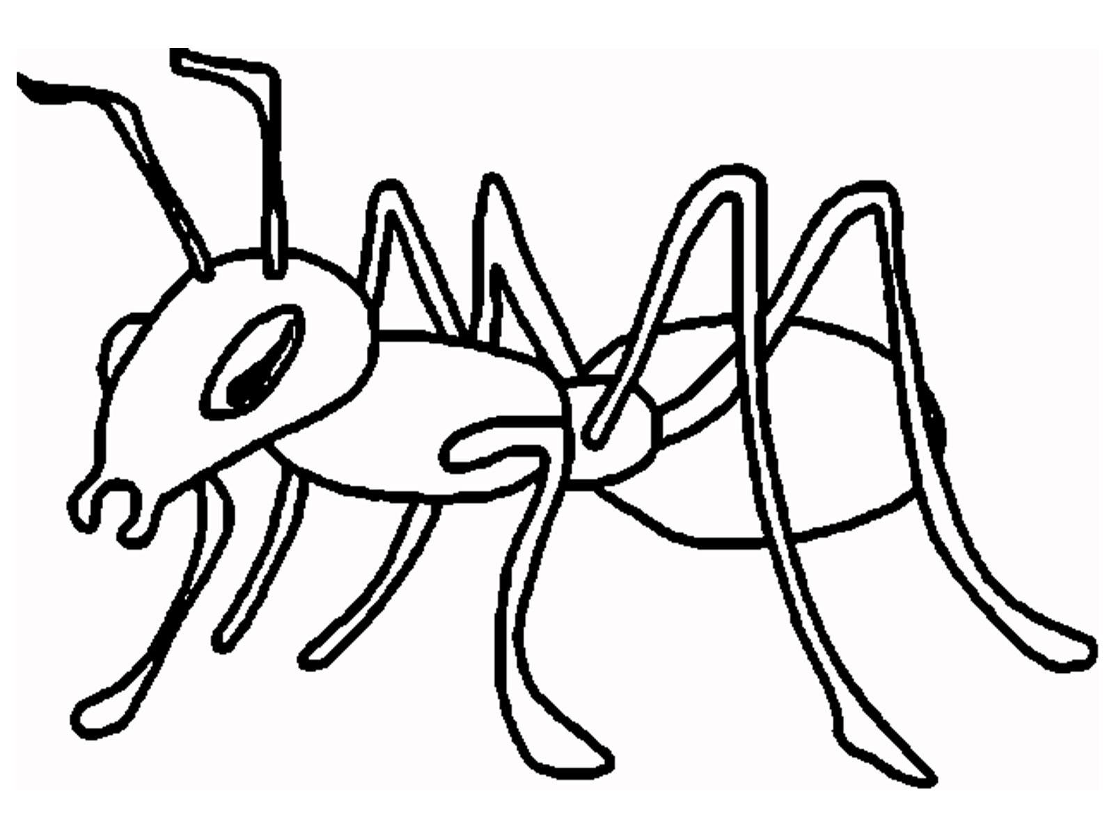 a for ant coloring pages top 25 free printable ants coloring pages online for coloring pages a ant