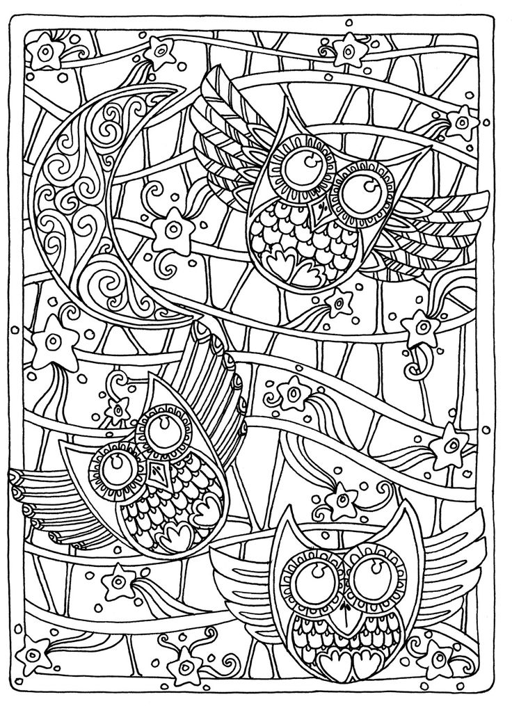 adult coloring page 10 cats who made hilariously poor decisions domestic coloring page adult