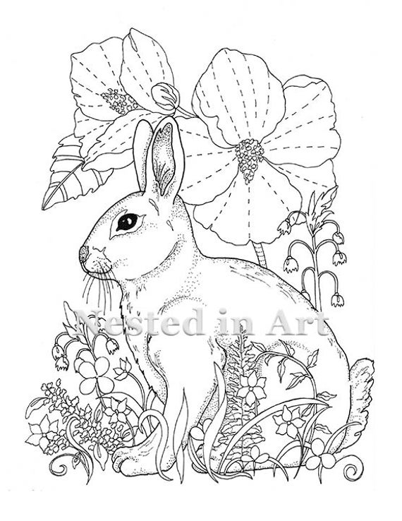 adult coloring page owl coloring pages for adults free detailed owl coloring adult page coloring