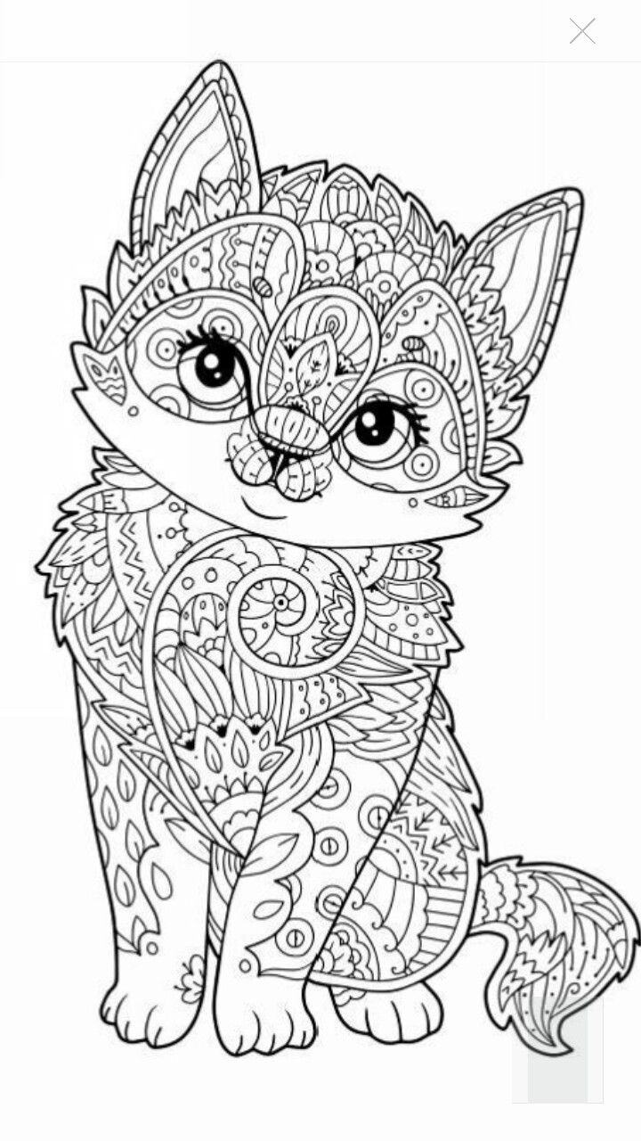 adult coloring pages free 10 cats who made hilariously poor decisions domestic adult pages coloring free