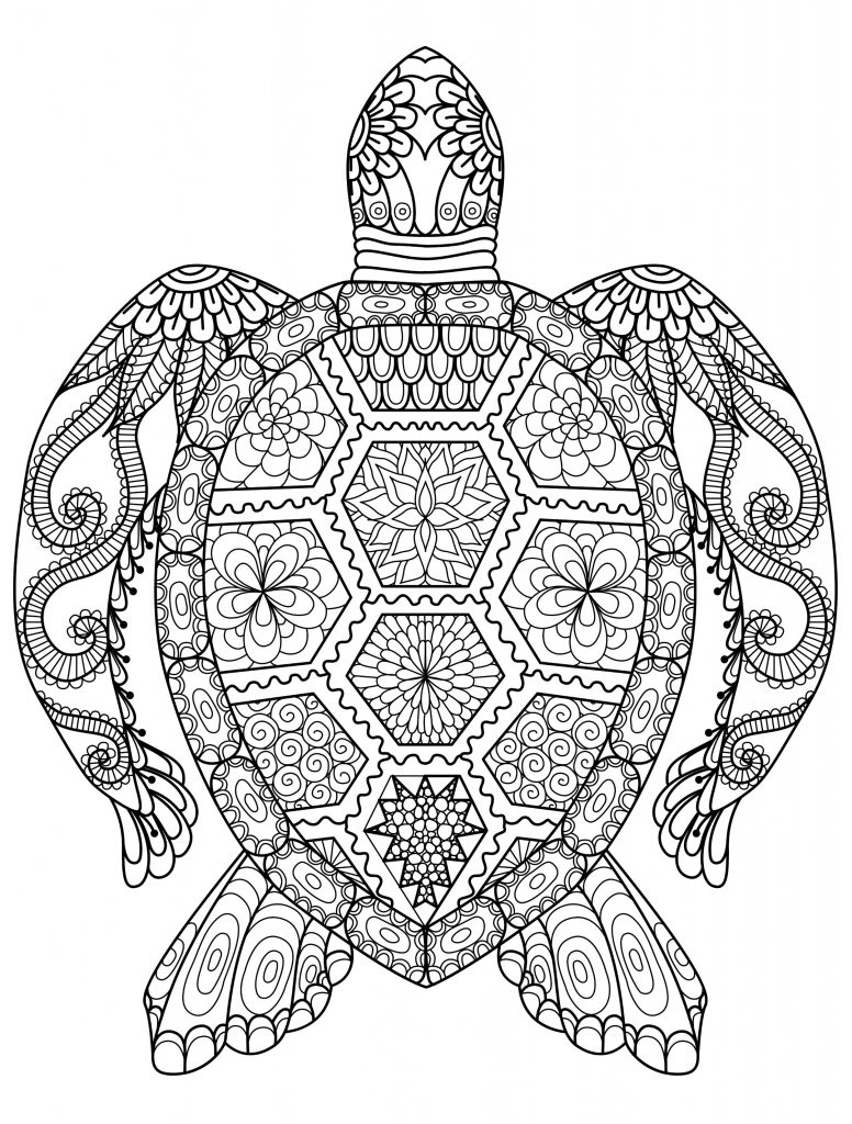 adult coloring pages free free coloring pages for adults only coloring pages adult pages free coloring