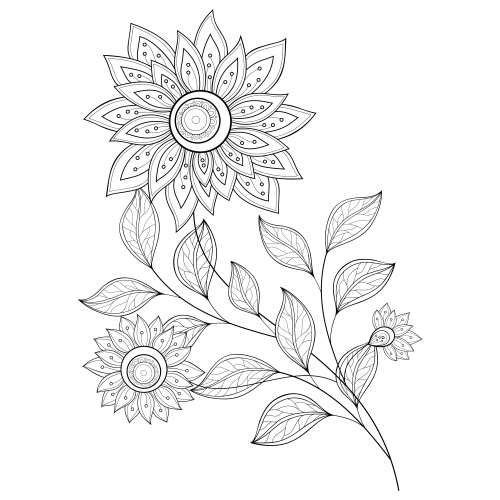 advanced flower coloring pages advanced coloring pages for artists coloring pages pages flower coloring advanced