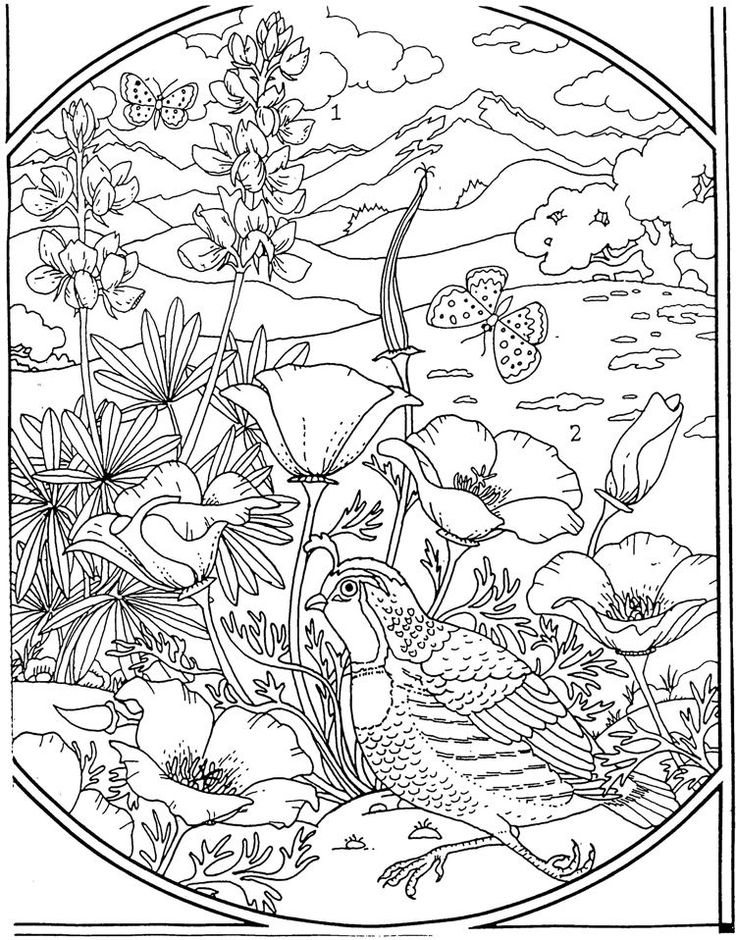 advanced flower coloring pages hand rita blommor doodles stock vektor emila1604 advanced pages flower coloring