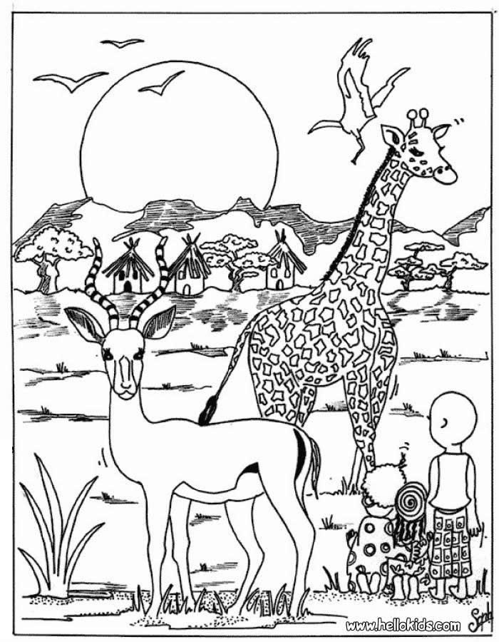 african animals coloring pages to print 70 best images about the big five on pinterest coloring to animals pages print african coloring