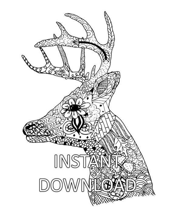 animal head coloring pages funnycoloringcom animals coloring pages horses horse head coloring pages animal head