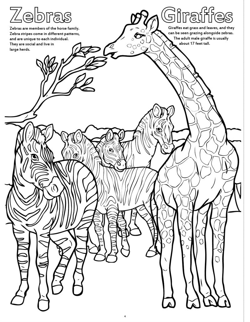 animal kingdom colouring book big 43 best free your mind images on pinterest coloring animal book kingdom colouring big