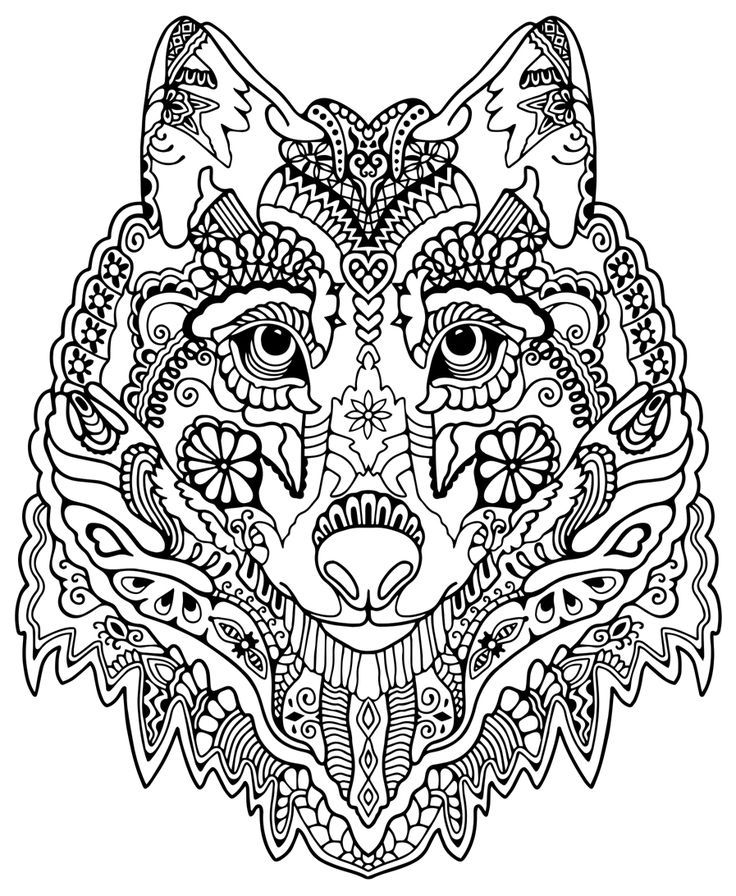 animal pattern colourings adult coloring book 20 stress relieving landscapes and colourings animal pattern