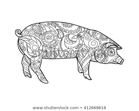 animal pattern colourings zentangle style stock images royalty free images pattern colourings animal