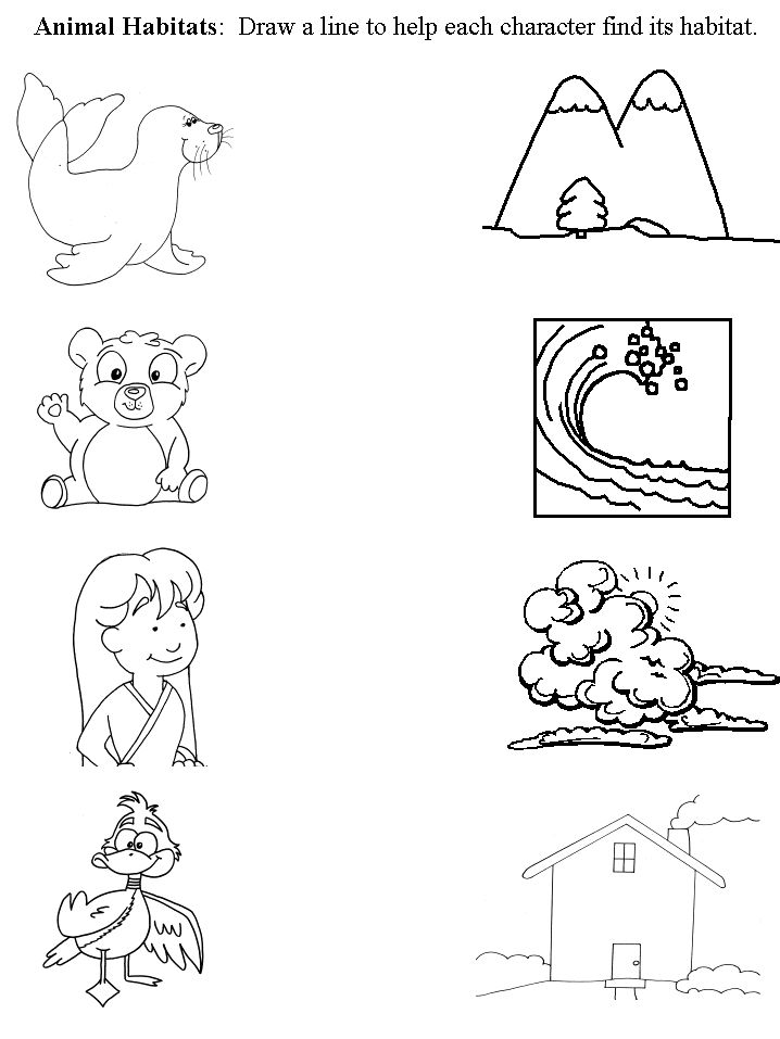 animal printables for kindergarten 67 best images about preschool animal habitats on printables kindergarten animal for