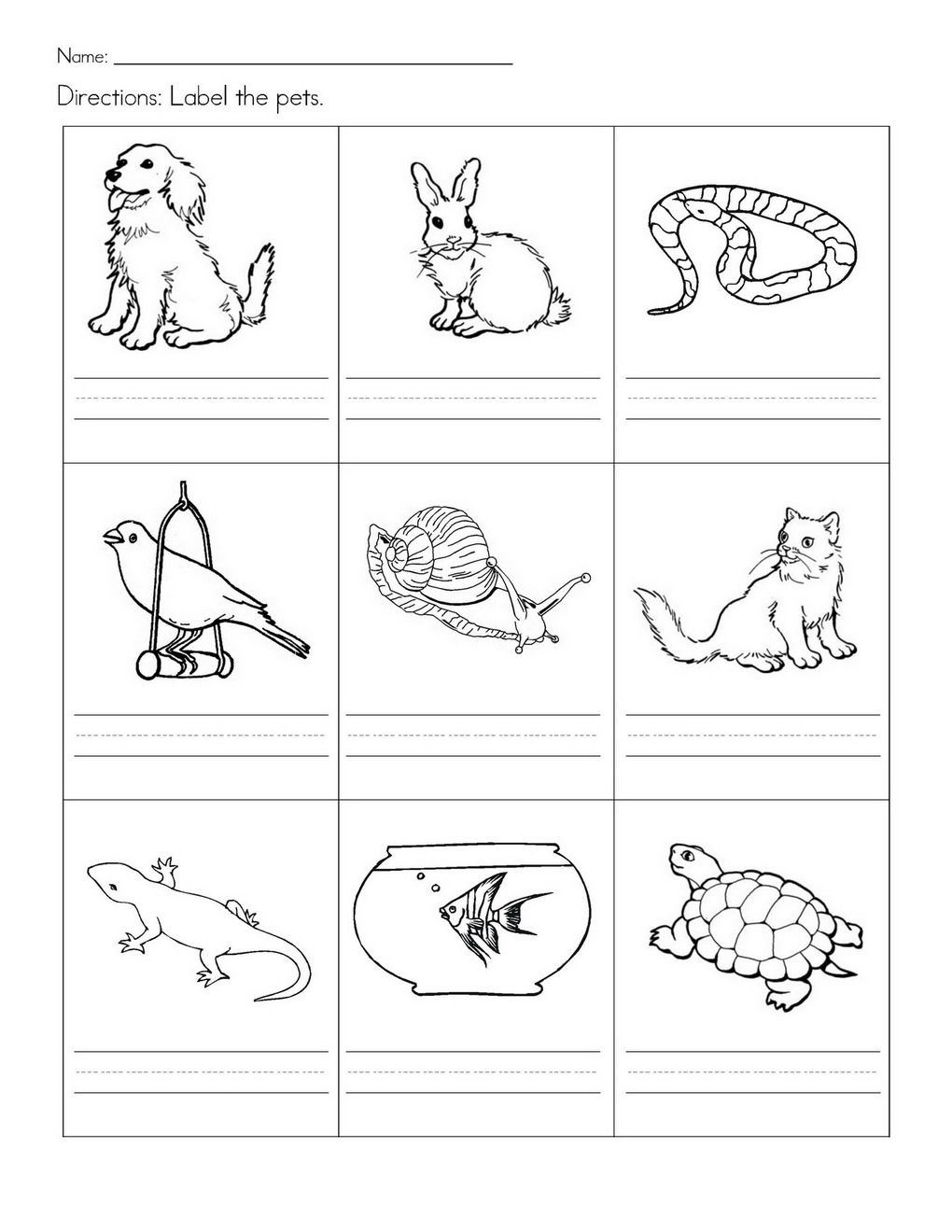 animal printables for kindergarten animal game preschool science activities animals their for printables animal kindergarten