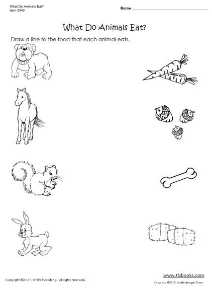 animal printables for kindergarten quotwhat do animals eatquot worksheet animal worksheets animal printables for kindergarten