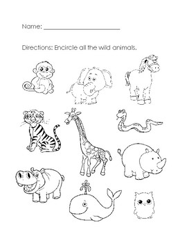 animal printables for kindergarten wild animals worksheet by aileen chu teachers pay teachers kindergarten animal printables for