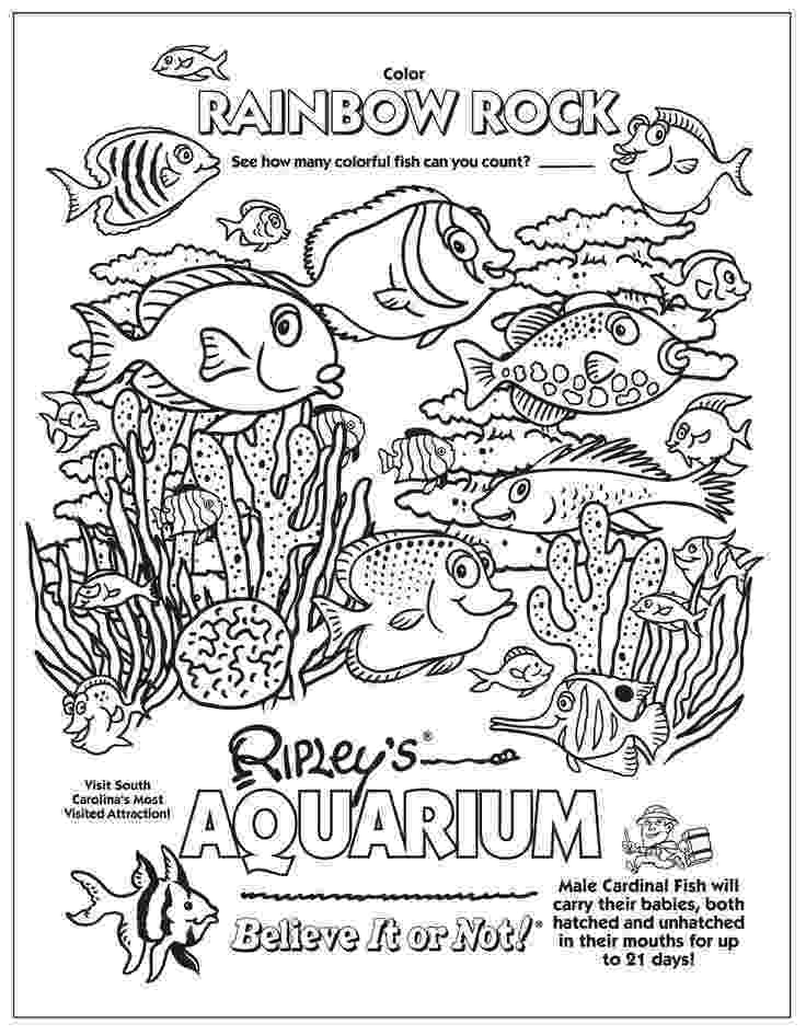 aquarium coloring pages aquarium coloring pictures aquarium pages coloring