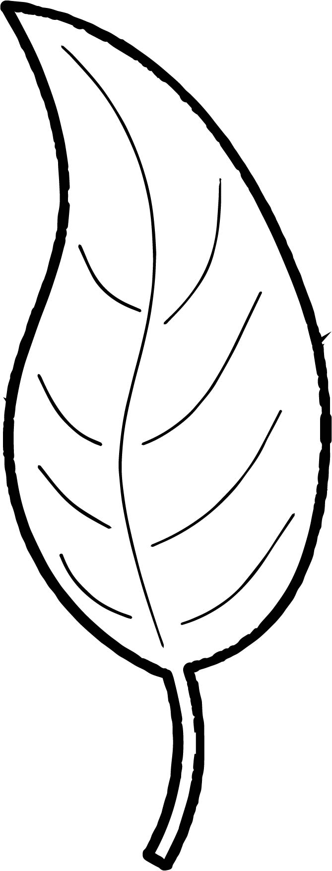 autumn leaves pictures to colour fall coloring pages for young children free instant download pictures colour leaves autumn to