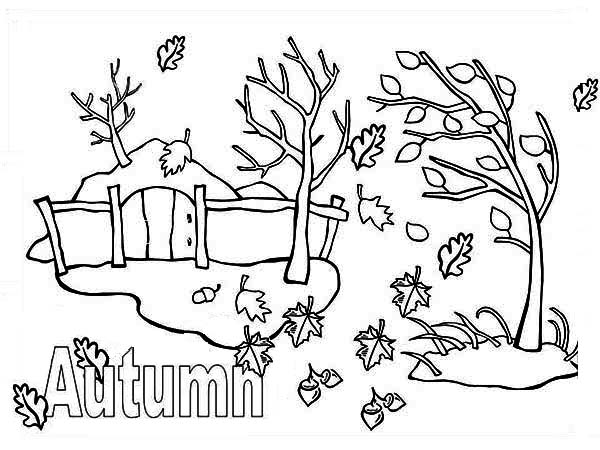 autumn season coloring pages fall coloring pages 360coloringpages season autumn pages coloring