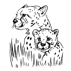 baby jaguar coloring pages 10 best free printable jaguar coloring pages online coloring jaguar pages baby