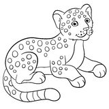 baby jaguar coloring pages baby wildcat cartoon stock illustrations 279 baby coloring jaguar baby pages