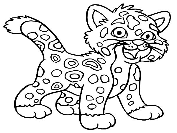baby jaguar coloring pages coloring in a tree jaguar coloring pages jaguar pages baby coloring