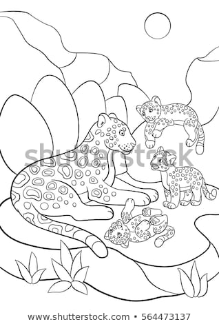 baby jaguar coloring pages coloring pages mother jaguar her little stock vector baby jaguar pages coloring