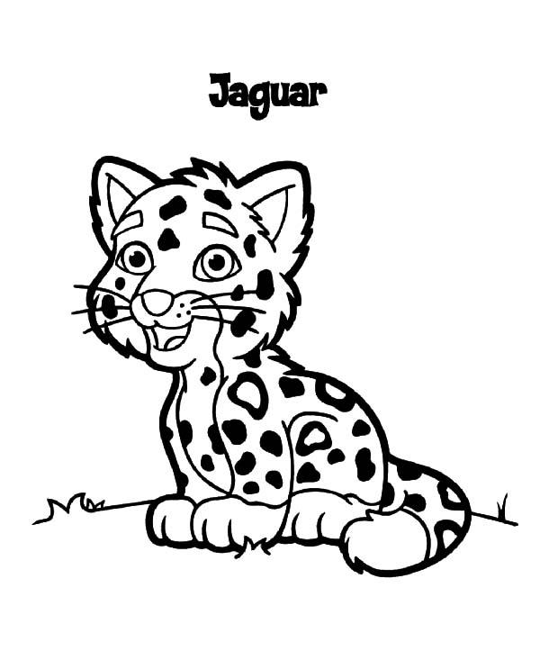 baby jaguar coloring pages cute baby jaguar coloring pages coloring pages baby jaguar coloring pages