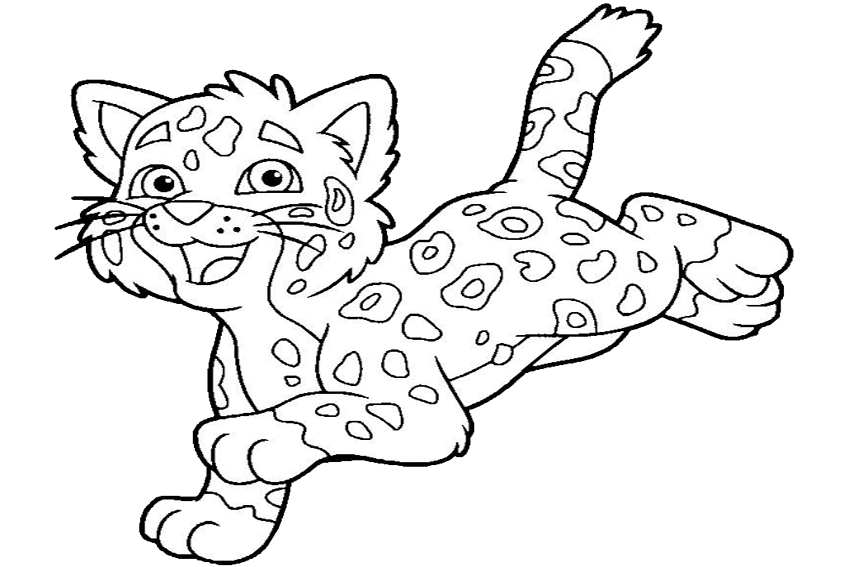 baby jaguar coloring pages how to draw how to draw baby jaguar from go diego baby coloring jaguar pages