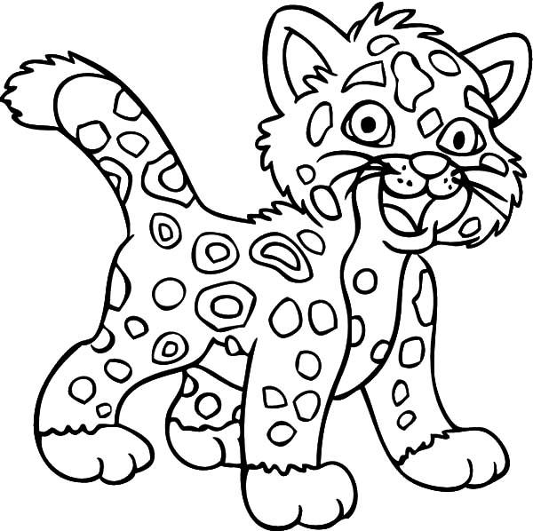 baby jaguar coloring pages jaguar head coloring pages pages jaguar coloring baby