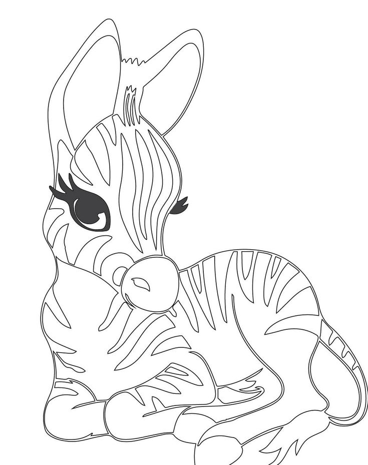 baby zebra coloring pages cute baby zebra coloring page supercoloringcom coloring pages zebra baby