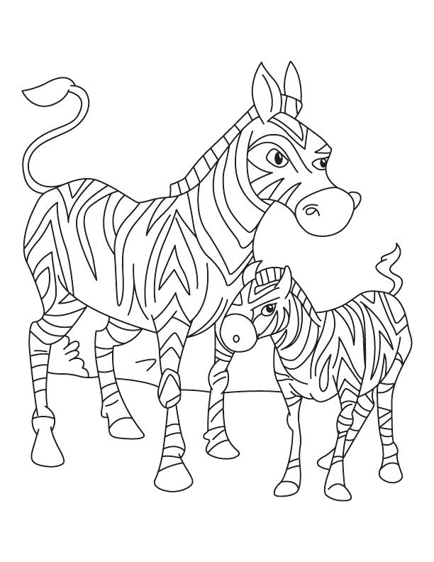 baby zebra coloring pages cute baby zebra coloring pages only coloring pages zebra baby coloring pages