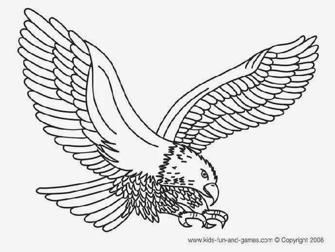 bald eagle coloring page printable bald eagle coloring pages for kids cool2bkids bald page coloring eagle 1 1