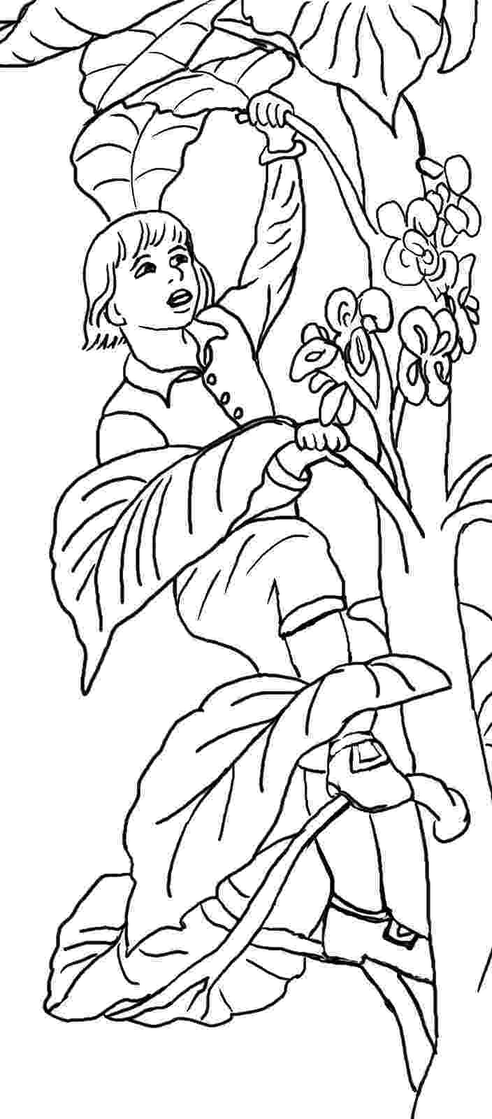 beanstalk coloring page jack and the beanstalk printable jack the beanstalk beanstalk coloring page