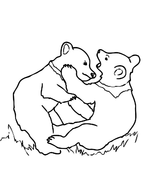 bear cub coloring pages bear cub colouring page pages cub bear coloring