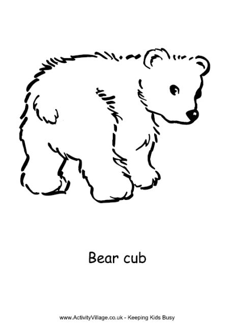 bear cub coloring pages photos bild galeria coloring page bear cub cub coloring pages bear