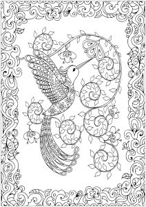 beautiful colouring pictures birds coloring pages for adults pictures colouring beautiful