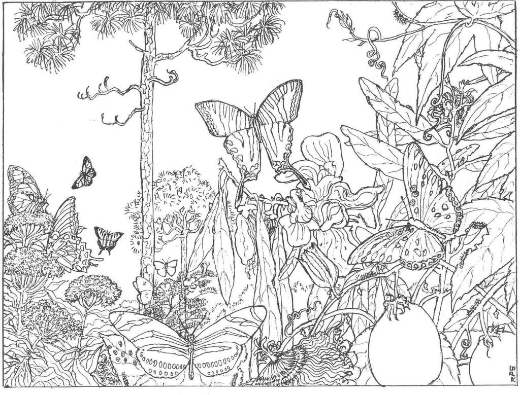 beautiful colouring pictures fairy coloring page the art therapy fairy coloring pictures colouring beautiful