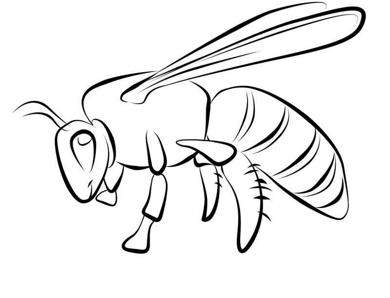 beehive coloring page bee coloring pages bees on the net beehive page coloring