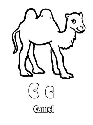 best animal colouring books 137 best images about animal coloring book on pinterest books animal best colouring