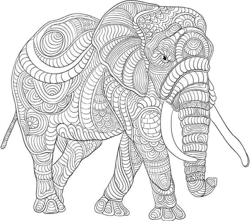 best animal colouring books 50 printable adult coloring pages that will help you de best colouring books animal