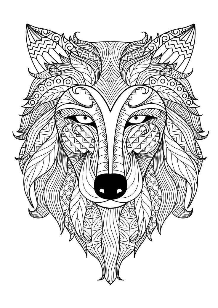 best animal colouring books animal coloring pages best coloring pages for kids colouring best animal books
