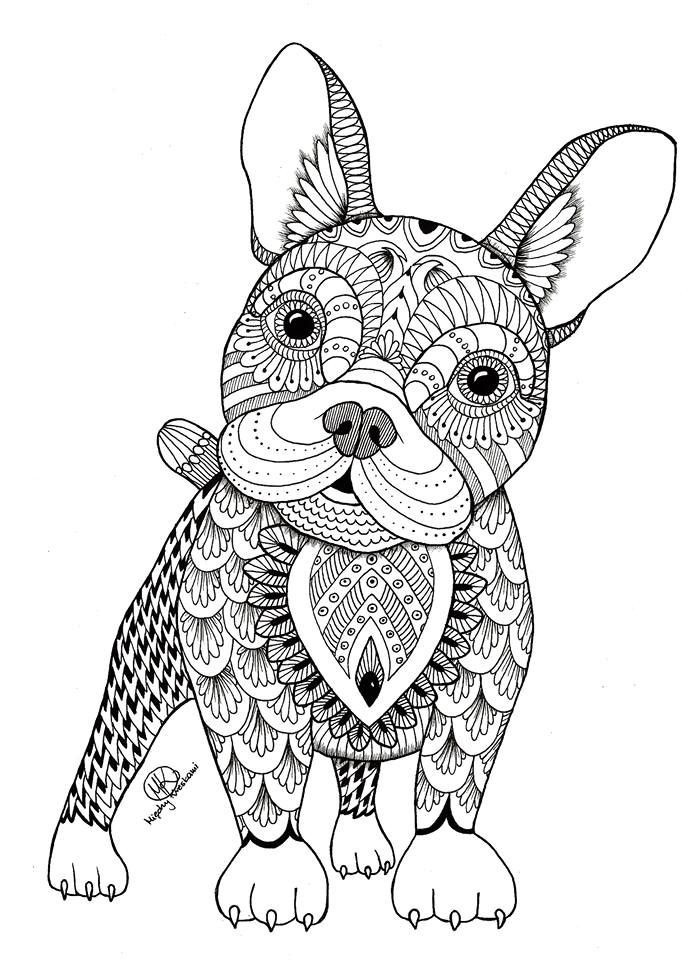 best animal colouring books animal the animal coloring book 50 cool design best animal colouring books