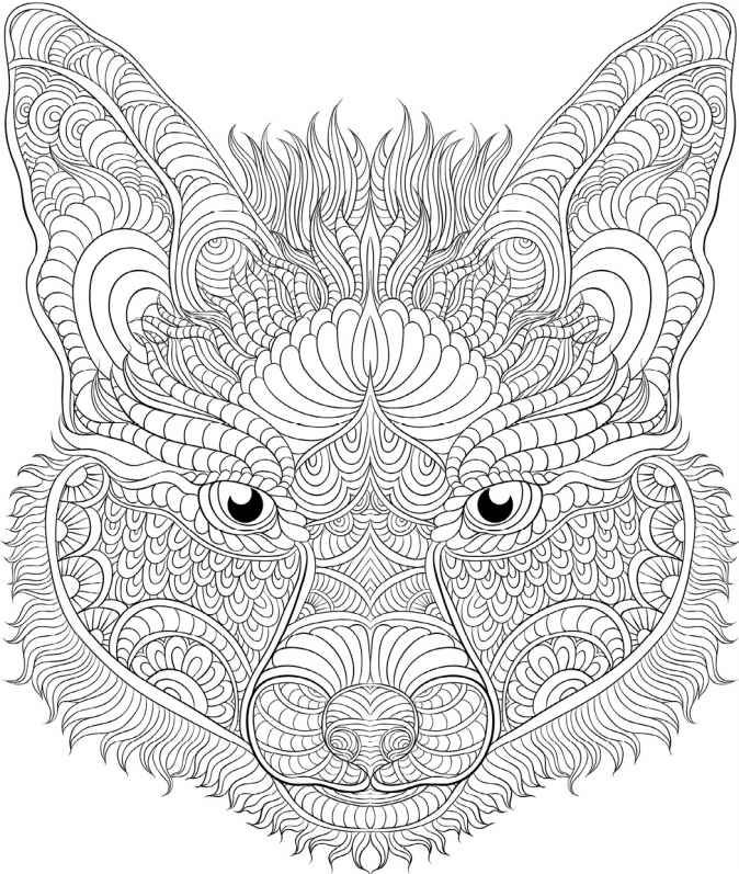 best animal colouring books animal the animal coloring book 50 cool design best books colouring animal