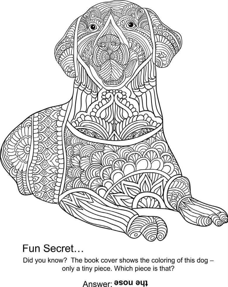 best animal colouring books animal the animal coloring book 50 cool design colouring best books animal