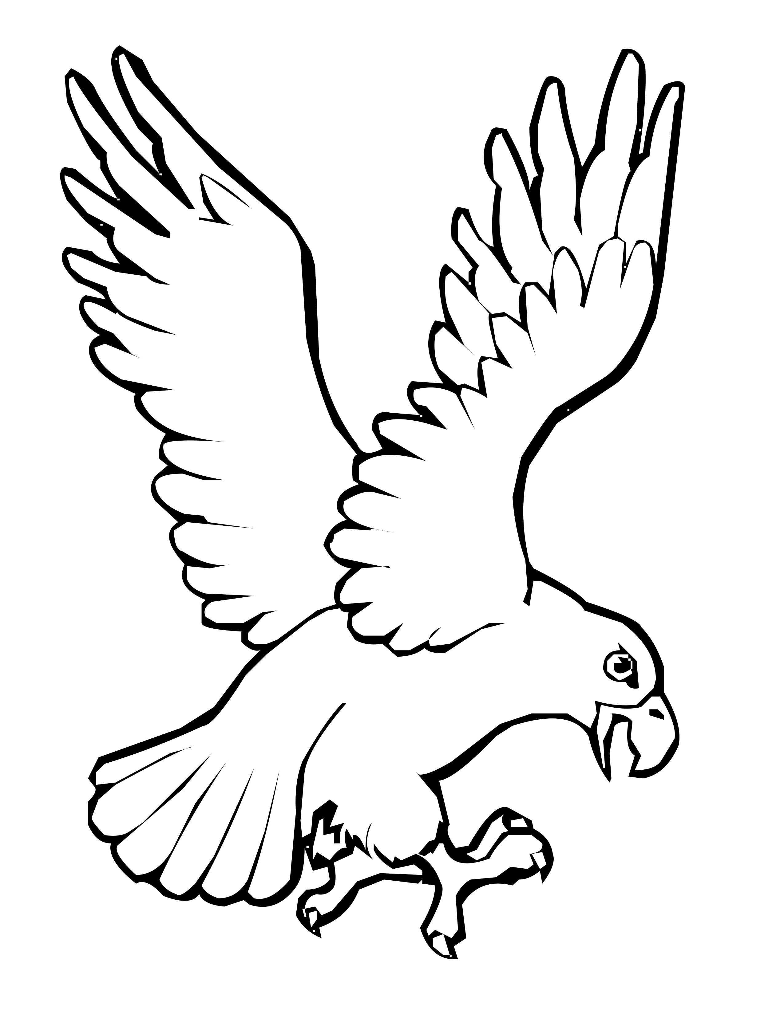 bird coloring pages eagle bird coloring pages to printable pages coloring bird