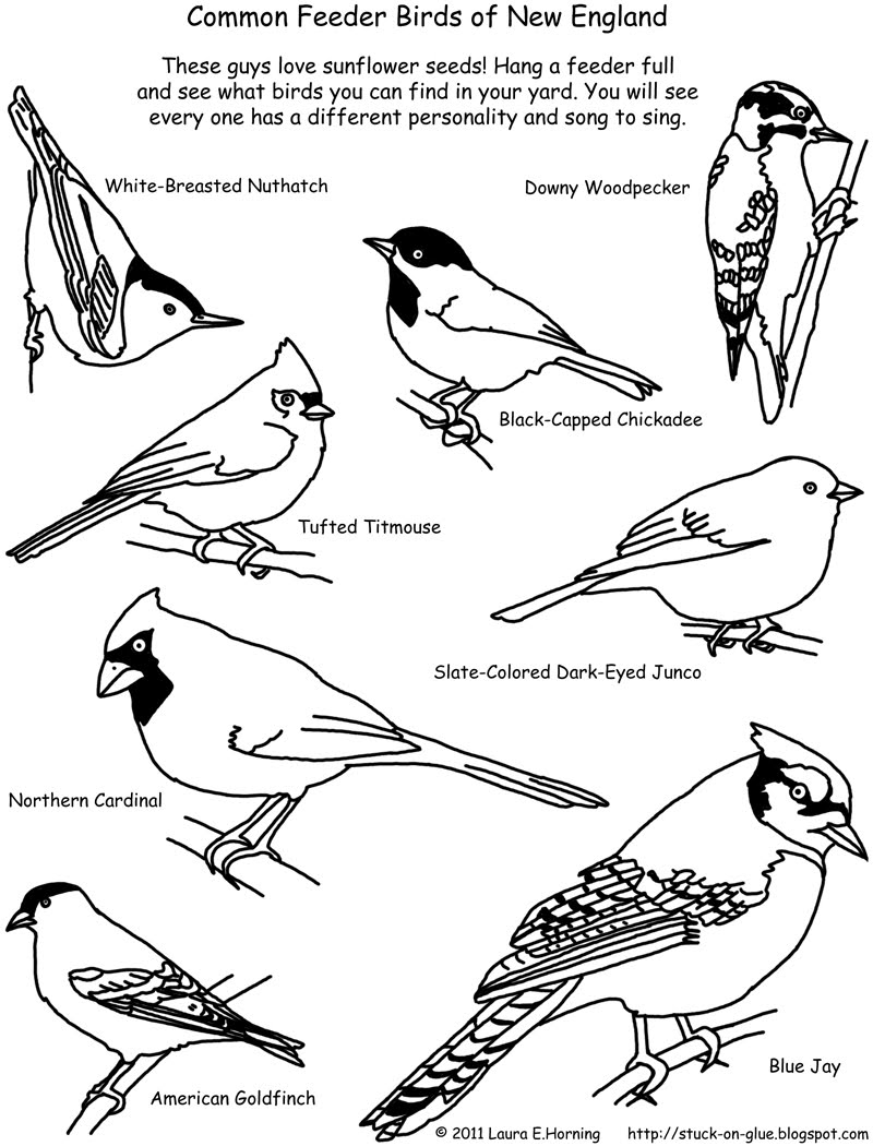 bird coloring pages free flying bird coloring pages gtgt disney coloring pages bird pages coloring