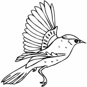 bird coloring pages happy family art original and fun coloring pages bird coloring pages