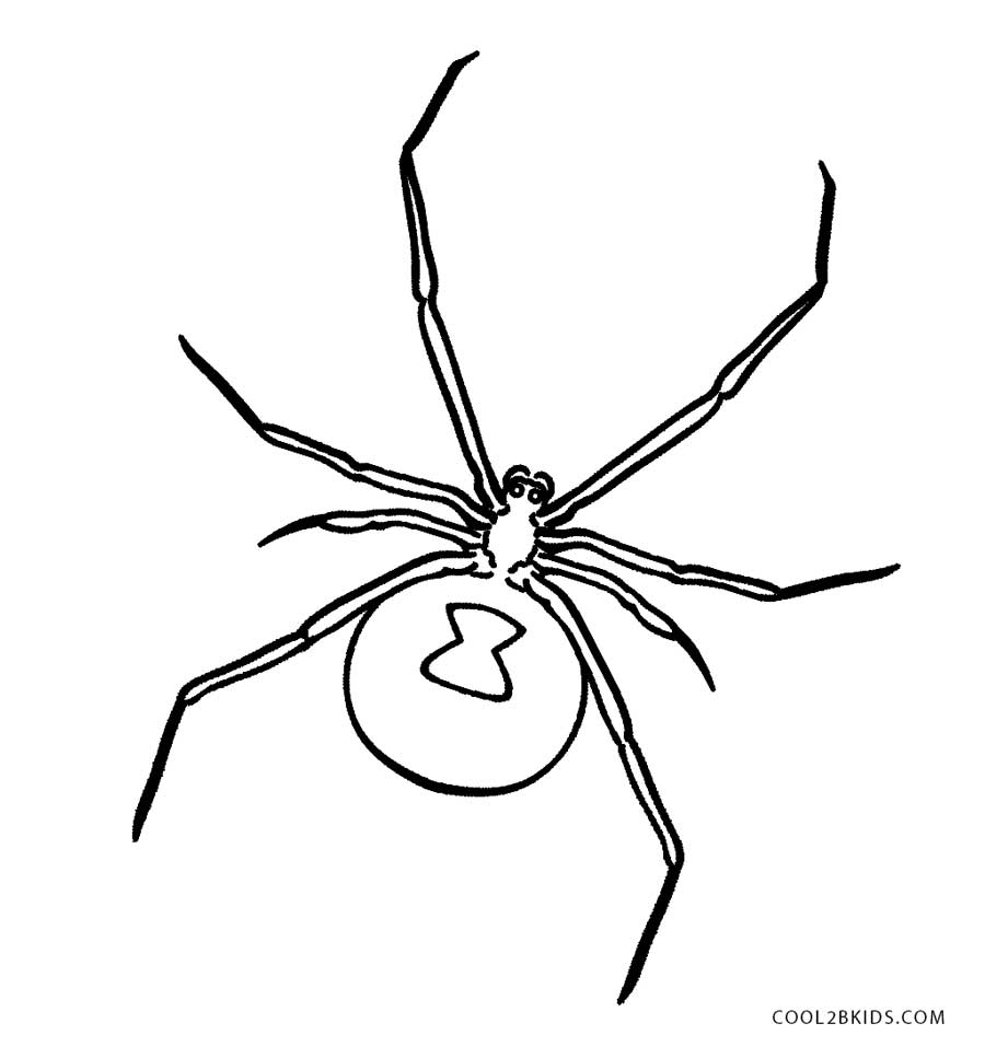 black widow spider coloring pages black widow coloring page twisty noodle pages spider coloring widow black